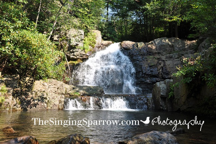 HickoryRun_Waterfall6_WEB